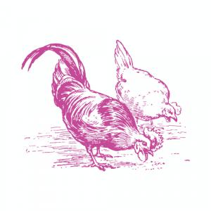 Plush Pantry Dorset Chicken & free range Eggs