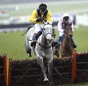 Rooster Booster Cheltenham Race Winner